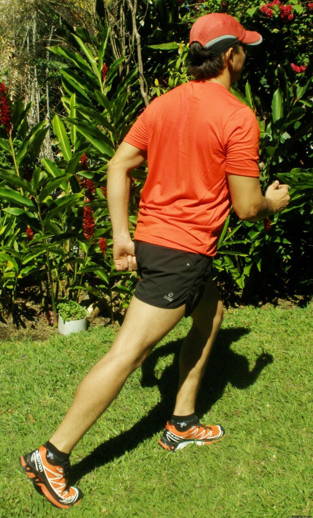 Armarios que se puede hacer para bajar la grasa abdominal rigor