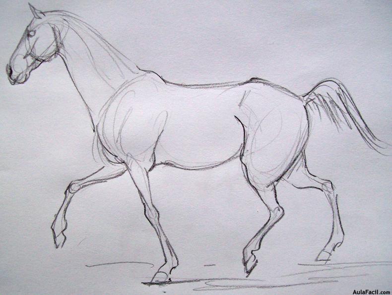 Curso gratis de Dibujo de Caballos - Dibujar Caballos - Postura de ...