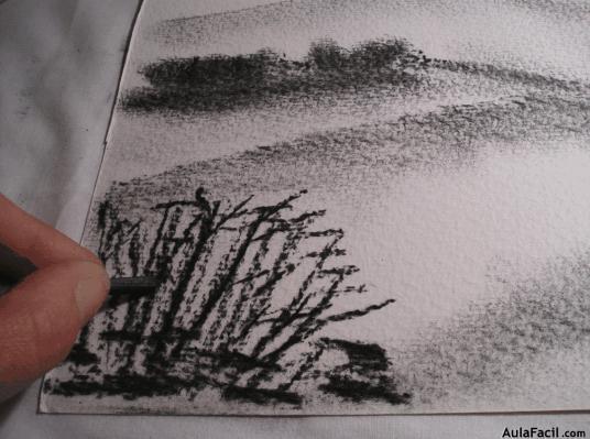 Movimiento en los matorrales - Dibujo Básico