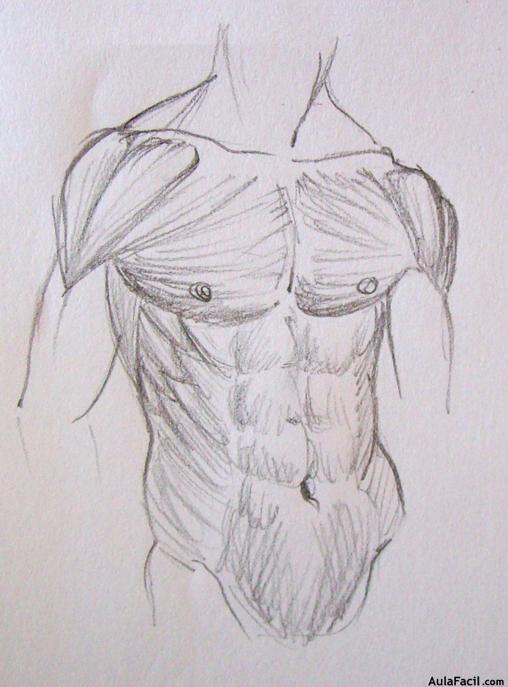 ⏩Los músculos IV - Dibujo Anatomía | AulaFacil.com: Los mejores ...