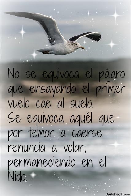 Volar alto