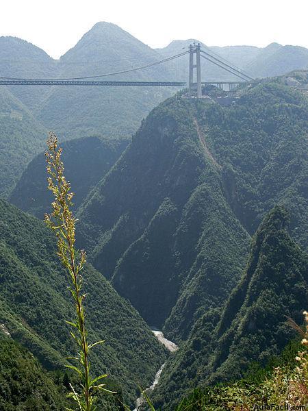 Sidu puente