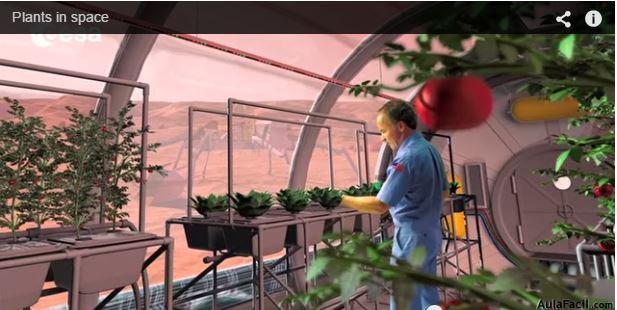 Plantas en el espacio  Aulafacil.com