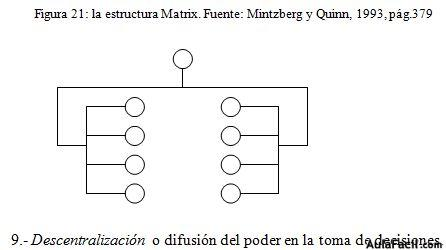 estructura matrix