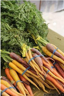 Beneficios de la  zanahoria. Salud Aulafacil.com