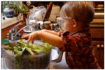 The young boy is preparing a salad