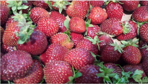 Beneficios de las fresas. Salud Aulafacil.com
