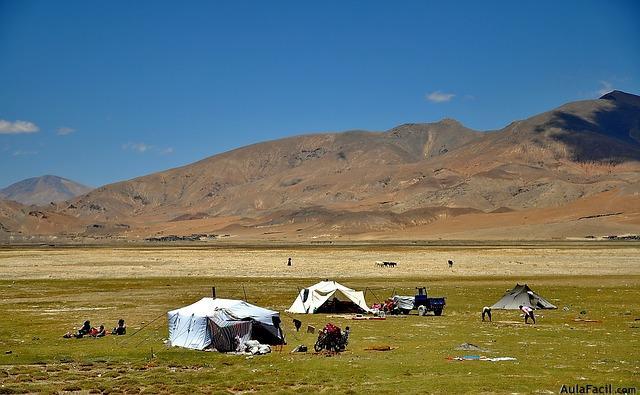 tibet acampada