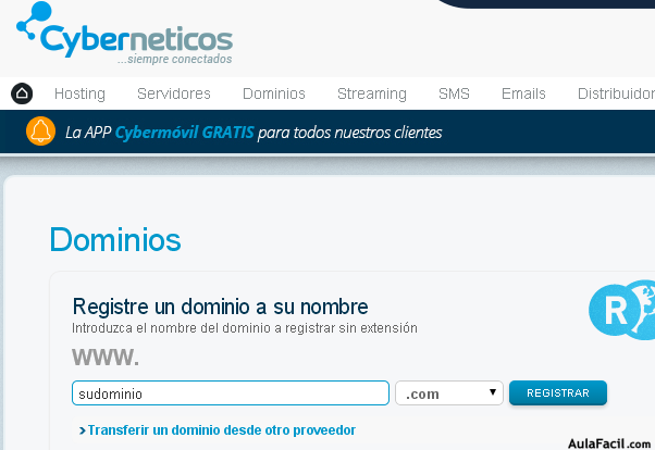 Cyberneticos - Registro de dominio