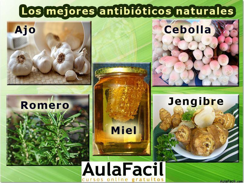 Antibióticos naturales. Aulafacil.com