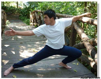 tai chi chuan