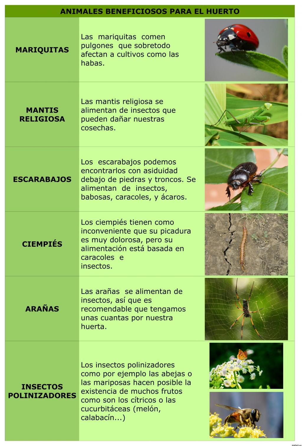 Animales beneficiosos