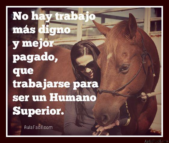 humano superior