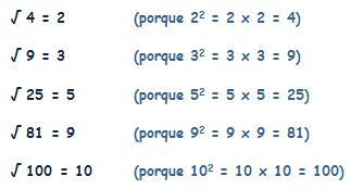 matematicas sexto de primaria