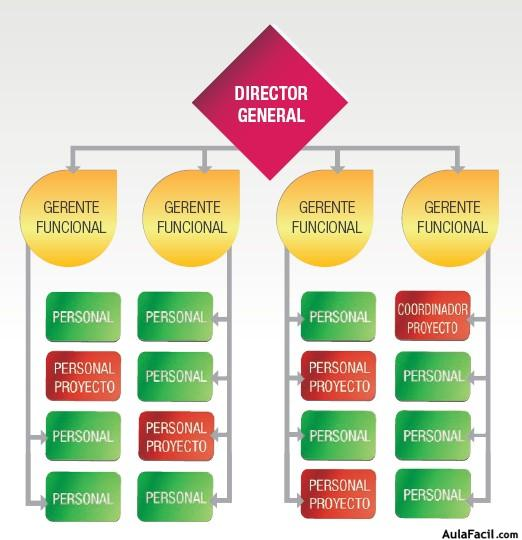 Organización Matricial Débil Conceptos Básicos De