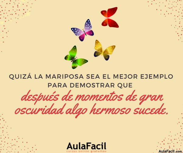PensamientoPositivo Mariposas AulaFacil