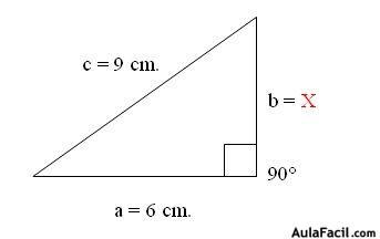 ⏩Teorema de Pitágoras - Física General I - Notaciones científicas ...